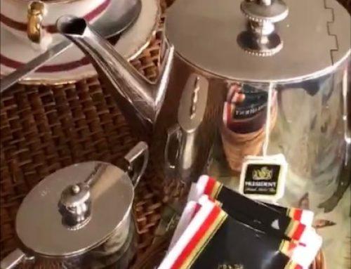 Los beneficios del Té en todas sus versiones