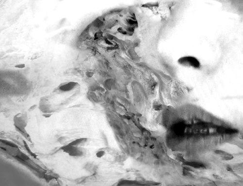 La última serie de la artista visual Elena Caja: Incertidumbre